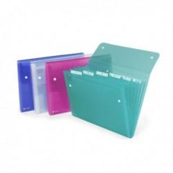 Cartella a 6 Tasche 22x30 cm Colori Assortiti Ice REXEL (10 Pz)