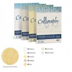 Carta Colorata CALLIGRAPHY A4 190 gr. 50 Fg. - 04 NOCCIOLA - FAVINI A69N084