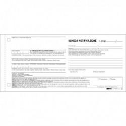 250 Schede di Notifica SNAP a 2 Copie Autoricalcanti 10x22 E5876N EDIPRO